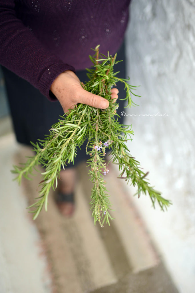 wild rosemary dried, thespartantable