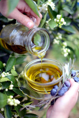 greek evoo organic thespartantable