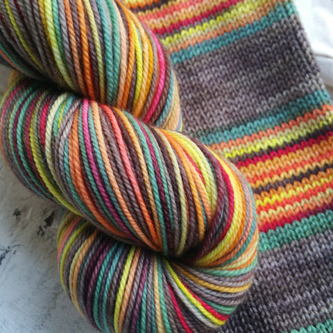 Campfire -Sport -must match sock - Must Stash self striping sock yarn fun colorful knitting large skein twin matching double