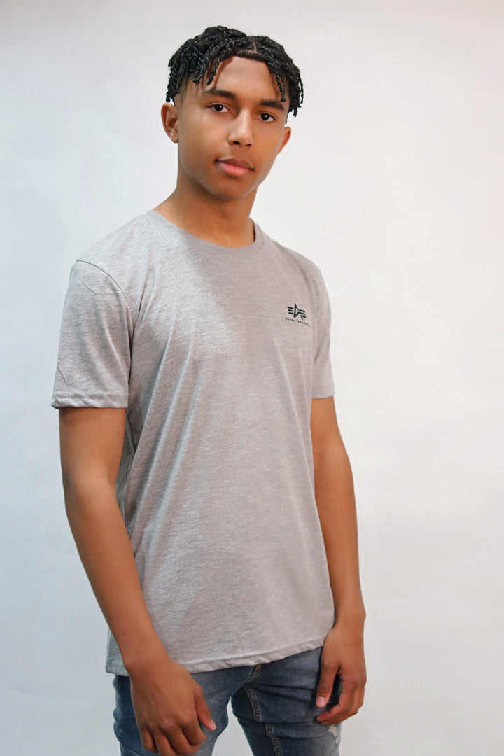 Alpha Industries S/S BASIC TEE Grey