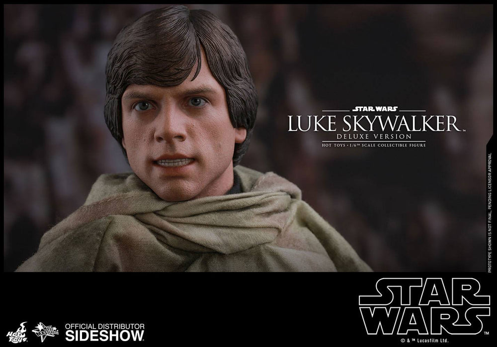 Hot Toys Star Wars Episode VI Luke Skywalker Endor Deluxe Version 1/6 Action Figure