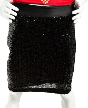 The Limited Dirty Diana Sequin Skirt Size 0 (SKU 000019)