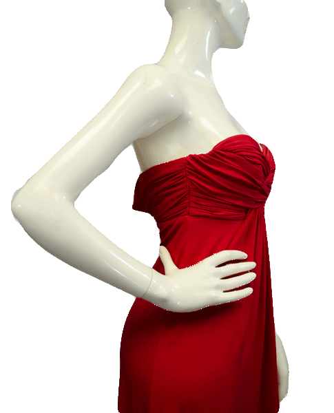Shelli Segal Red Strapless Dress Size 2 (SKU 000061)