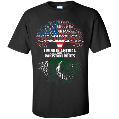 Living in America with PAKISTANI roots
