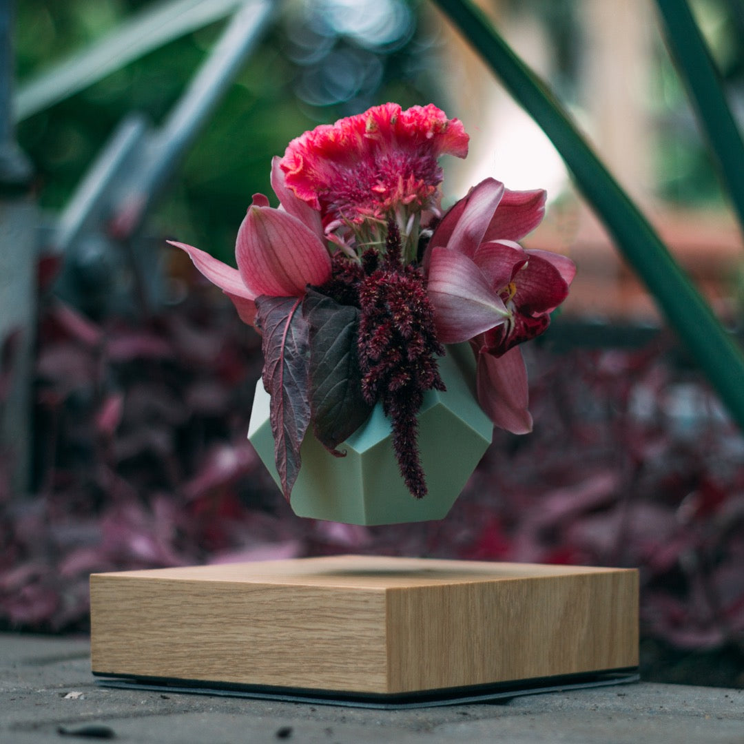 levitating planter, pot with olive silicone skin on floral background