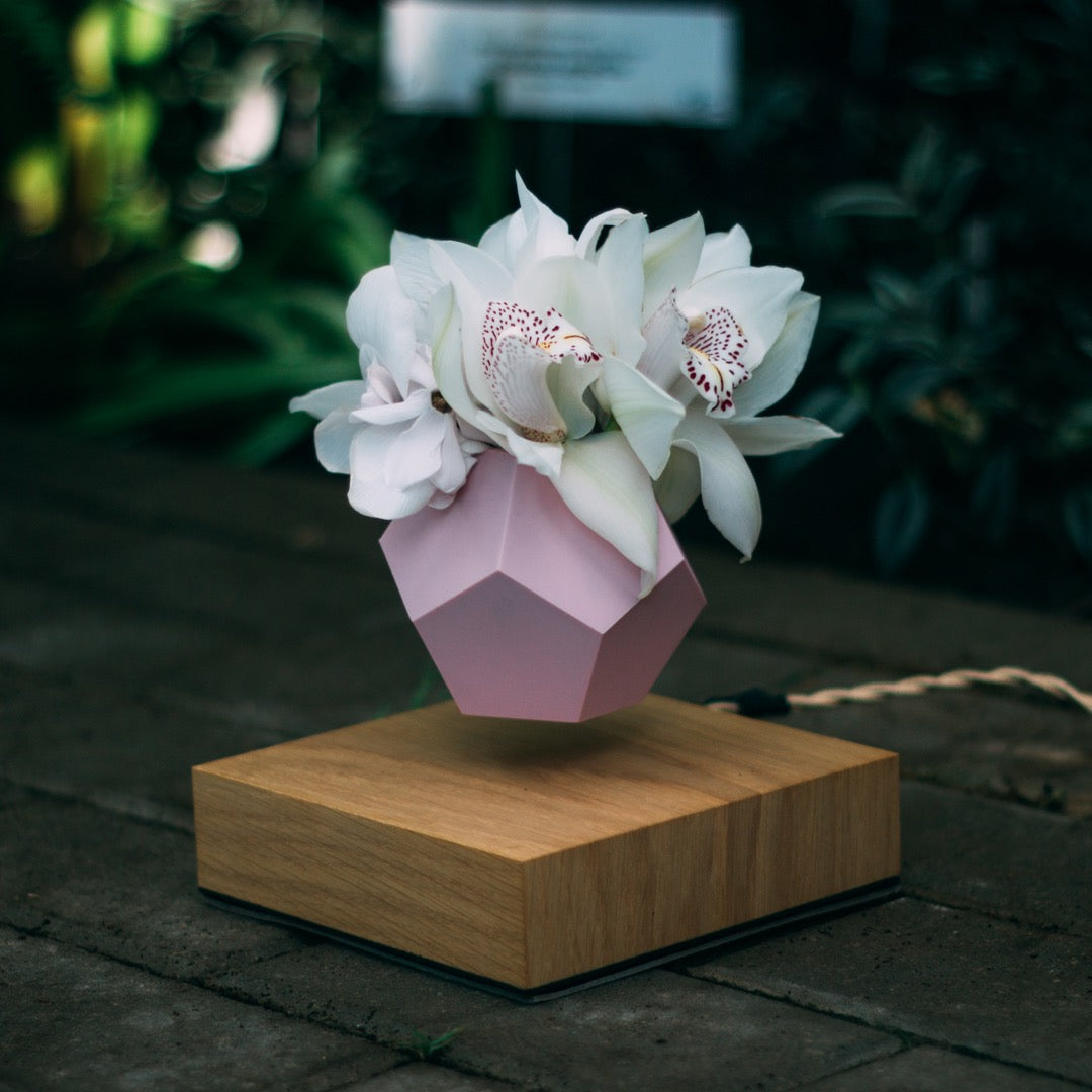 levitating planter, pot with pink skin with floral background