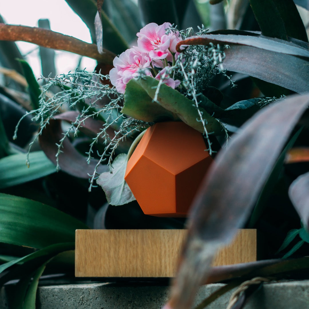 Levitating planter with terracota skin in flower surroundings