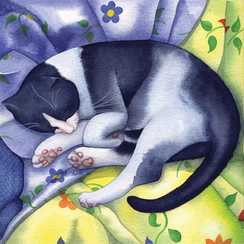 Sleeping Tom by Kate Green