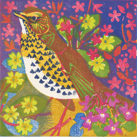 Colourful woodblock print of a Song Thrush bird
