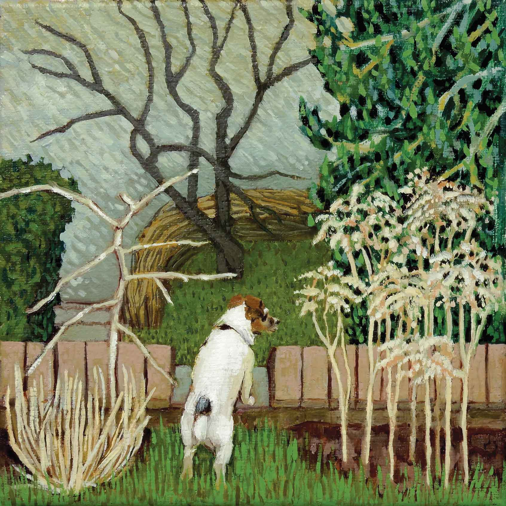 Art greeting card by Ann McCay, A little dog looking out over the garden fence