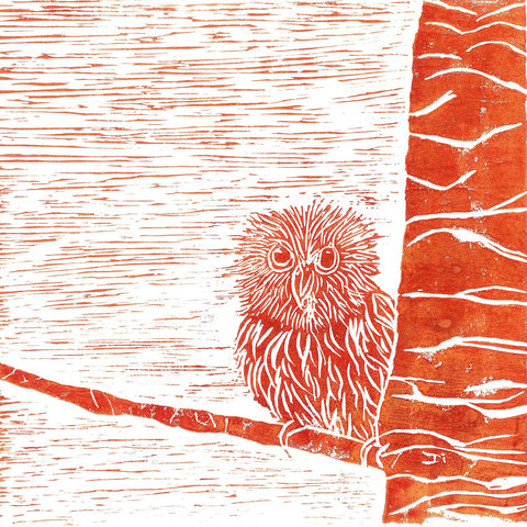Little Owl - Charity Card