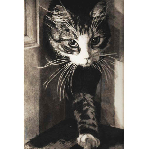 Fine Art Greeting Card by Barbara Jackson, Etching, Cat coming in through doorway