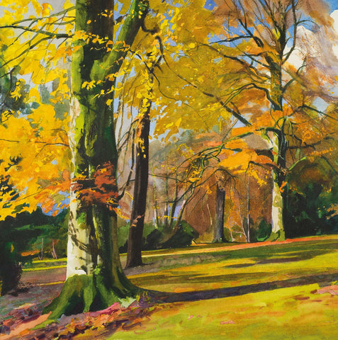 Fine Art Greeting Card, Autumn trees