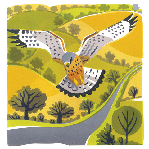Art Greeting Card by Carry Akroyd, Windhover, Serigraph, Hovering kestrel
