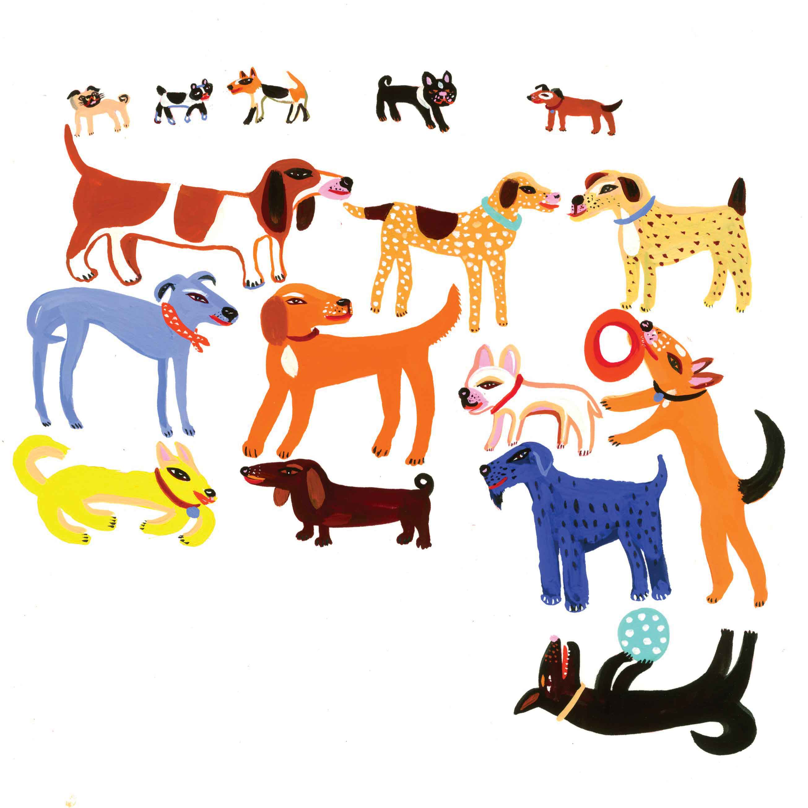 Dogs by Christopher Corr, Art Greeting Card, Gouache on Paper, Lots of dogs