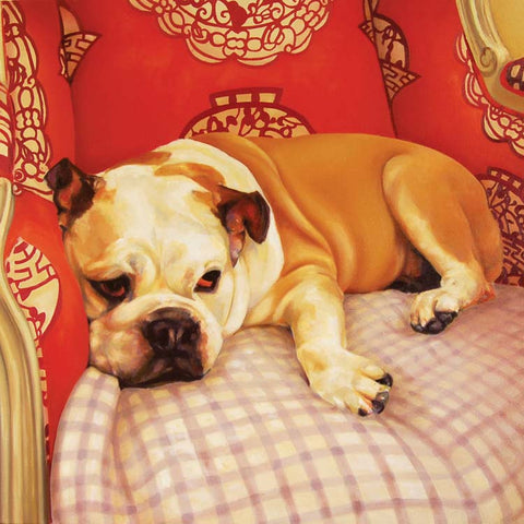 Daisy by Claire Eastgate, Fine Art Greeting Card, Oil on Canvas, Bulldog on chair