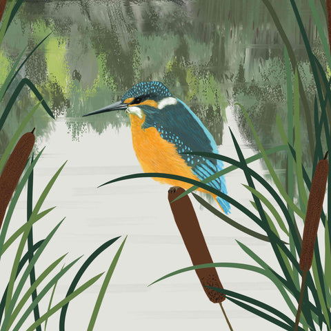 Art Greeting Card by Carla Vize-Martin, Kingfisher and Bullrushes, Digital Painting, Kingfisher on a reed