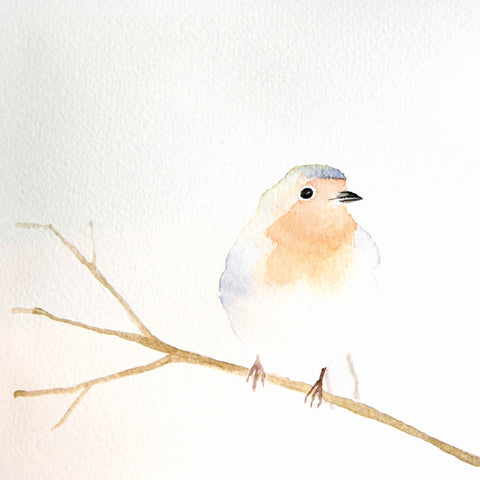 Christmas card pack by Carla Vize-Martin, Robin, watercolour of robin on a twig