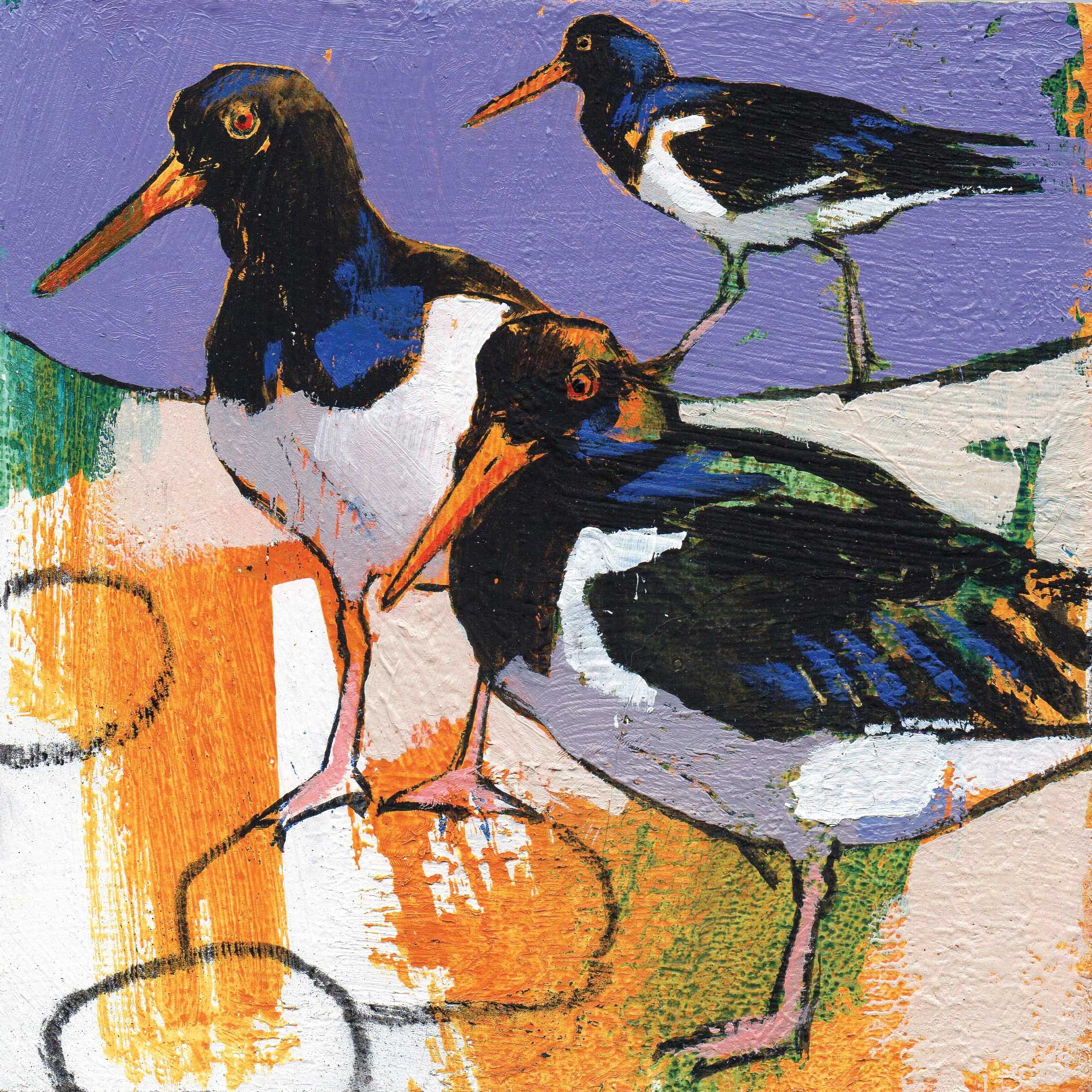 Oystercatchers by Daniel Cole, Fine Art Greeting Card, Oil and Charcoal, Oystercatchers