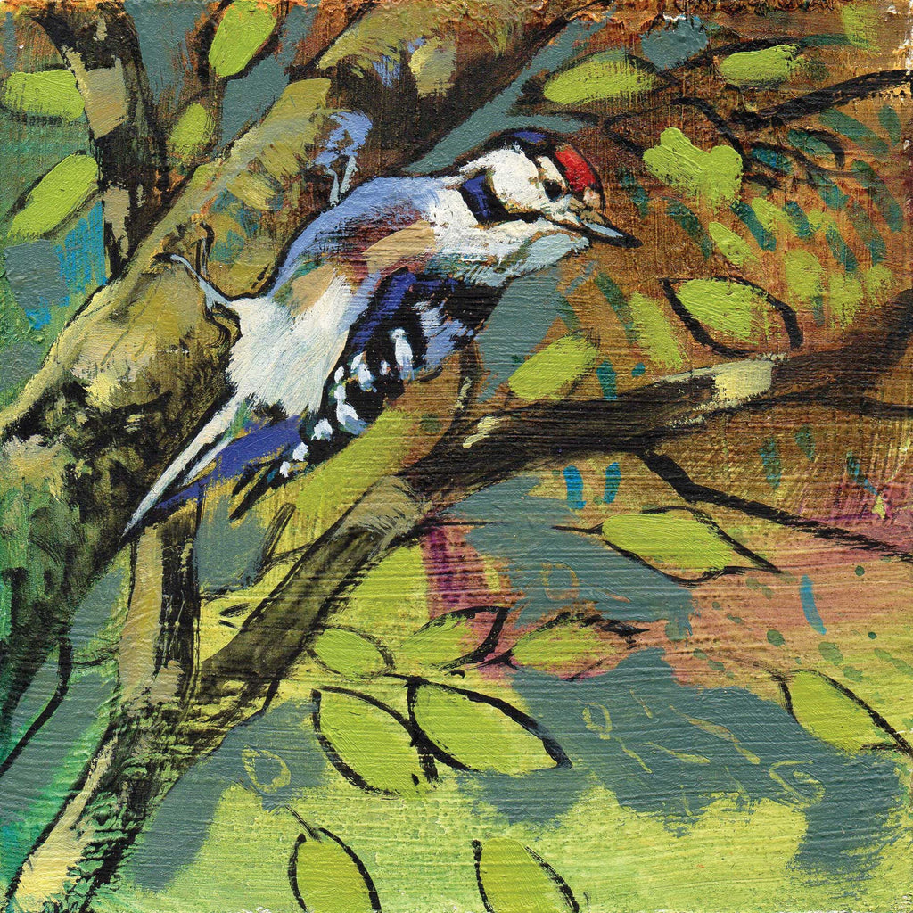 Lesser Spotted Woodpecker by Daniel Cole, Fine Art Greeting Card, Oil on Board, Lesser Spotted Woodpecker