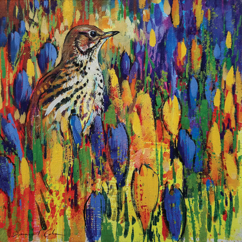 Fine Art Greeting Card by Daniel Cole, Oilpainting, Songthrush and crocuses