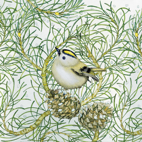 Goldcrest by Kate Green, Art Greeting Card, Mixed Media, Goldcrest