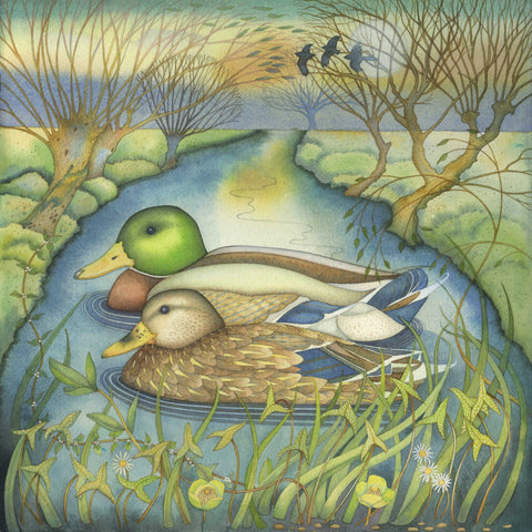 Mallards by Kate Green, Fine Art Greeting Card, Mixed Media, Two mallards on the river