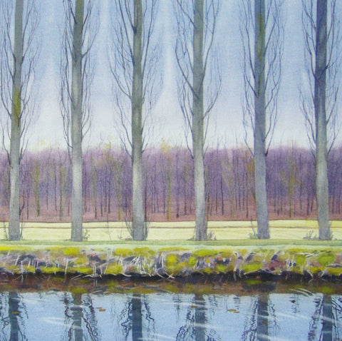 Fine Art Greeting Card, River bank with bare trees