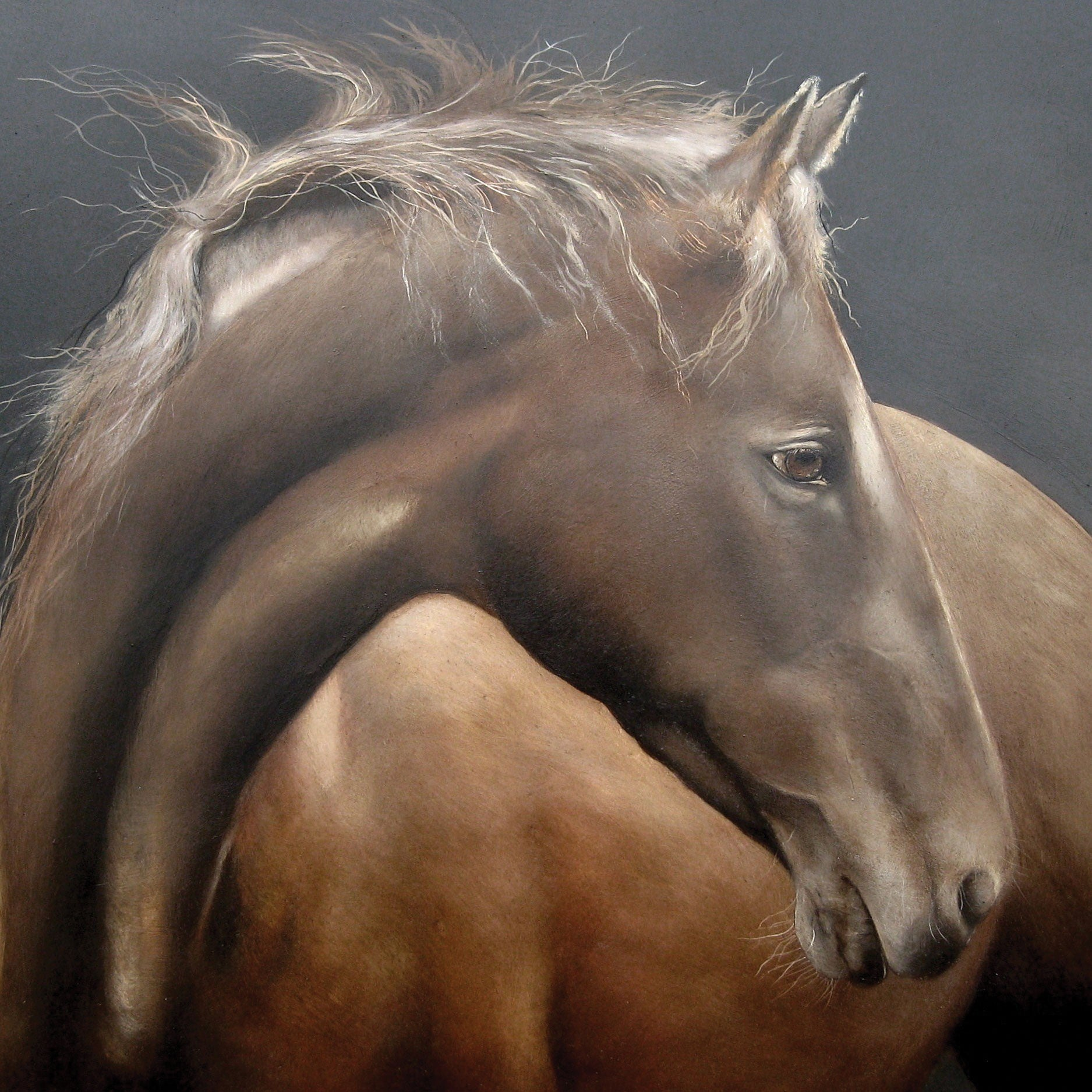 Gentle Horse by Lesley McLaren, Fine Art Greeting Card, Oil on Gesso Panel, Brown horse
