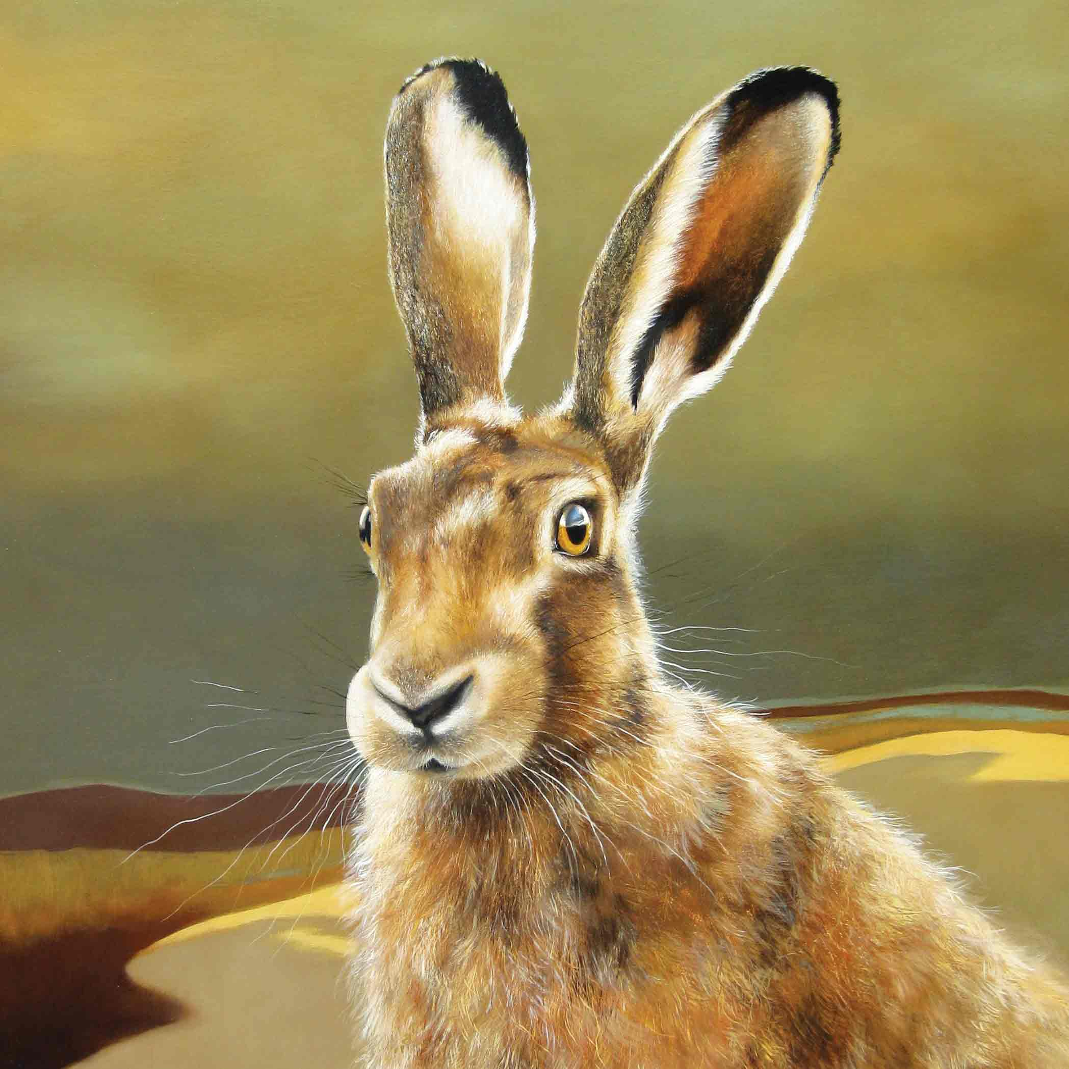 Art Greeting Card by Lesley McLaren, Hare on the Moor, Oil on Gesso panel, Hare