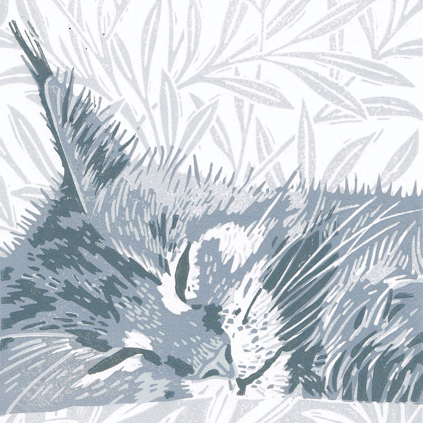 Grey Maine Coon Cat by Little Ram Studio, Art Greeting Card, Linocut, Maine Coon cat dozing on pillow