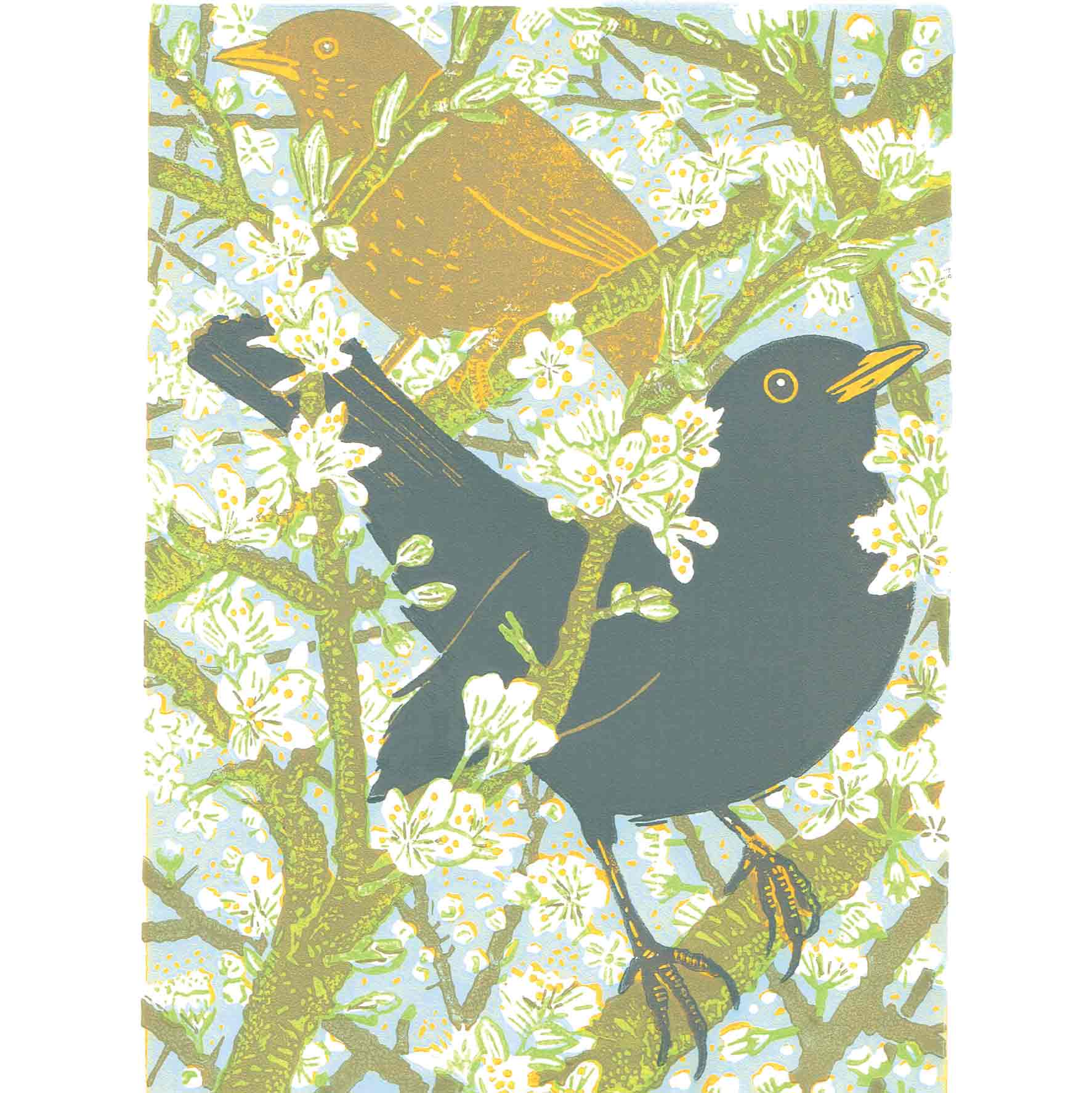 Art Greeting Card by Gary Ramskill, Blackthorn and Blackbirds, Two blackbirds in the blossom