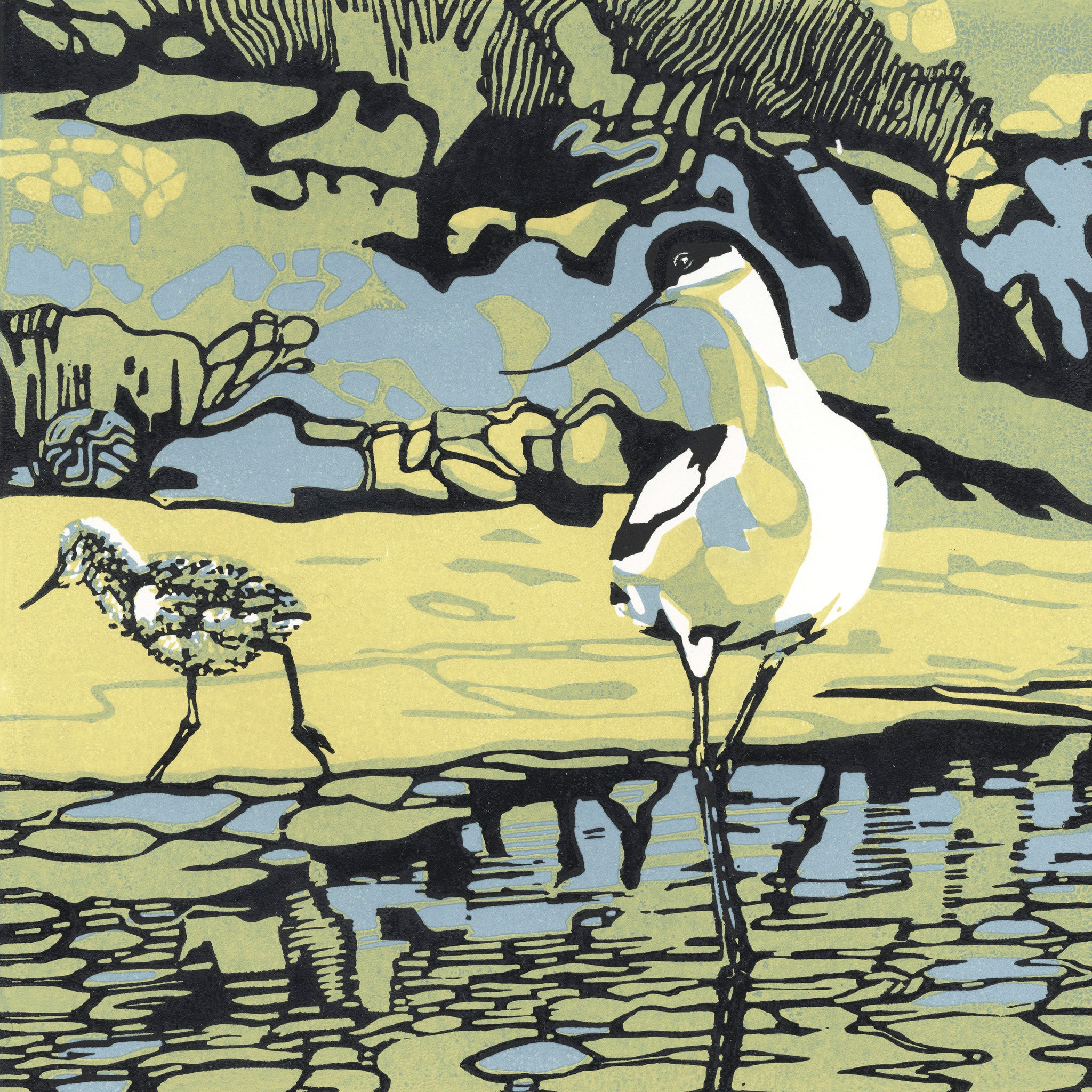 Stay Close by Max Angus, Art Greeting Card, Linocut, Avocet with chick