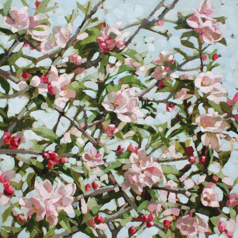 Apple Blossom by Anne-Marie Butlin, Fine Art Greeting Card, Oil on Canvas, Apple blossom