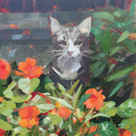 Louis in the Nasturtiums by Anne-Marie Butlin, Fine Art Greeting Card, Oil, Cat in the nasturtiums
