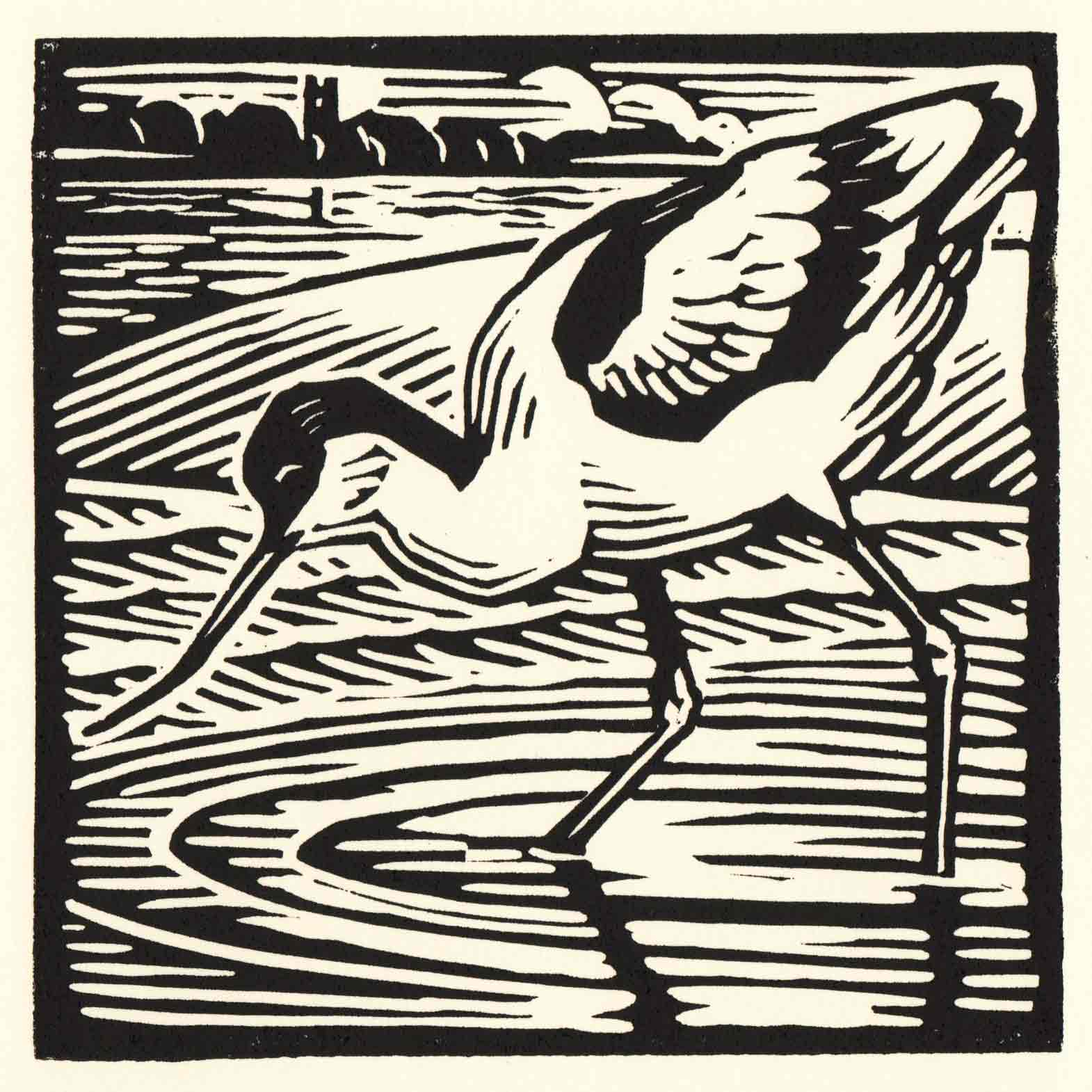 Art Greeting Card by Richard Allen, Avocet, Linocut, Avocet wading