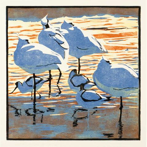 Art Greeting Card, Woodcut, Spoonbills and avocets in the water
