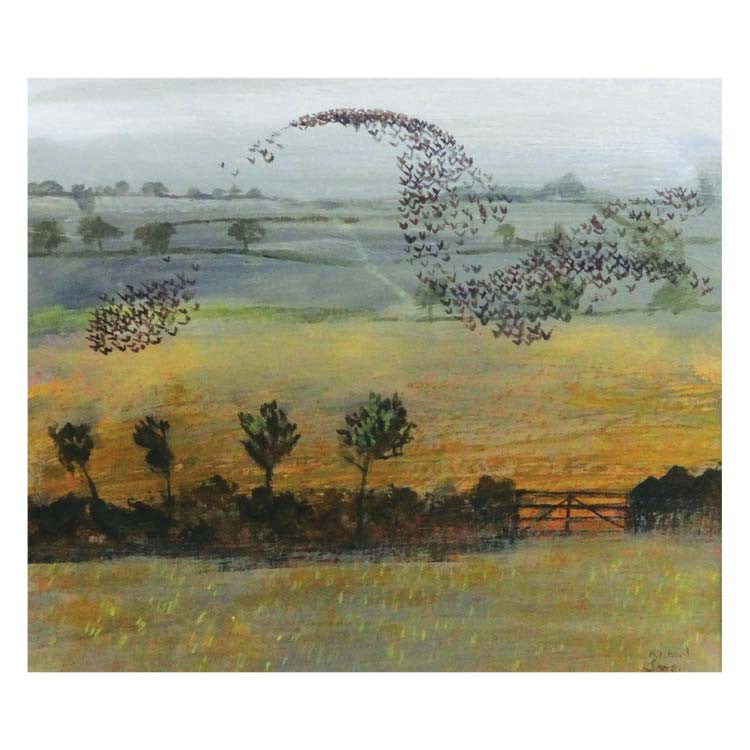 Fine Art Greeting Card, Starling murmurations over field