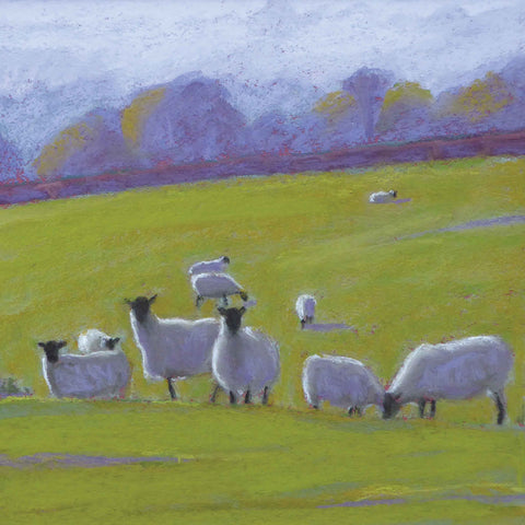 Morning Mist by Sue Campion, Fine Art Greeting Card, Pastel, Sheep in a field