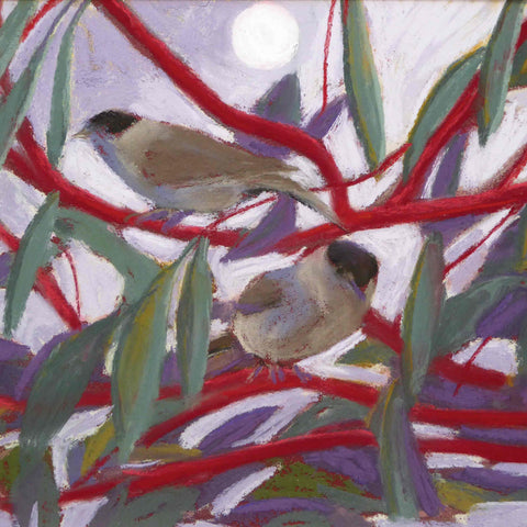 Art Greeting Card by Sue Campion, Blackcaps, Pastel, Blackcaps in tree