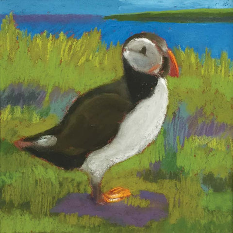 Fine Art Greeting Card, Pastel, Puffin by the Sea