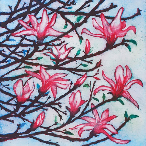 Pink Magnolia by Susie Perring, Art Greeting Card, Aquatint, Magnolia