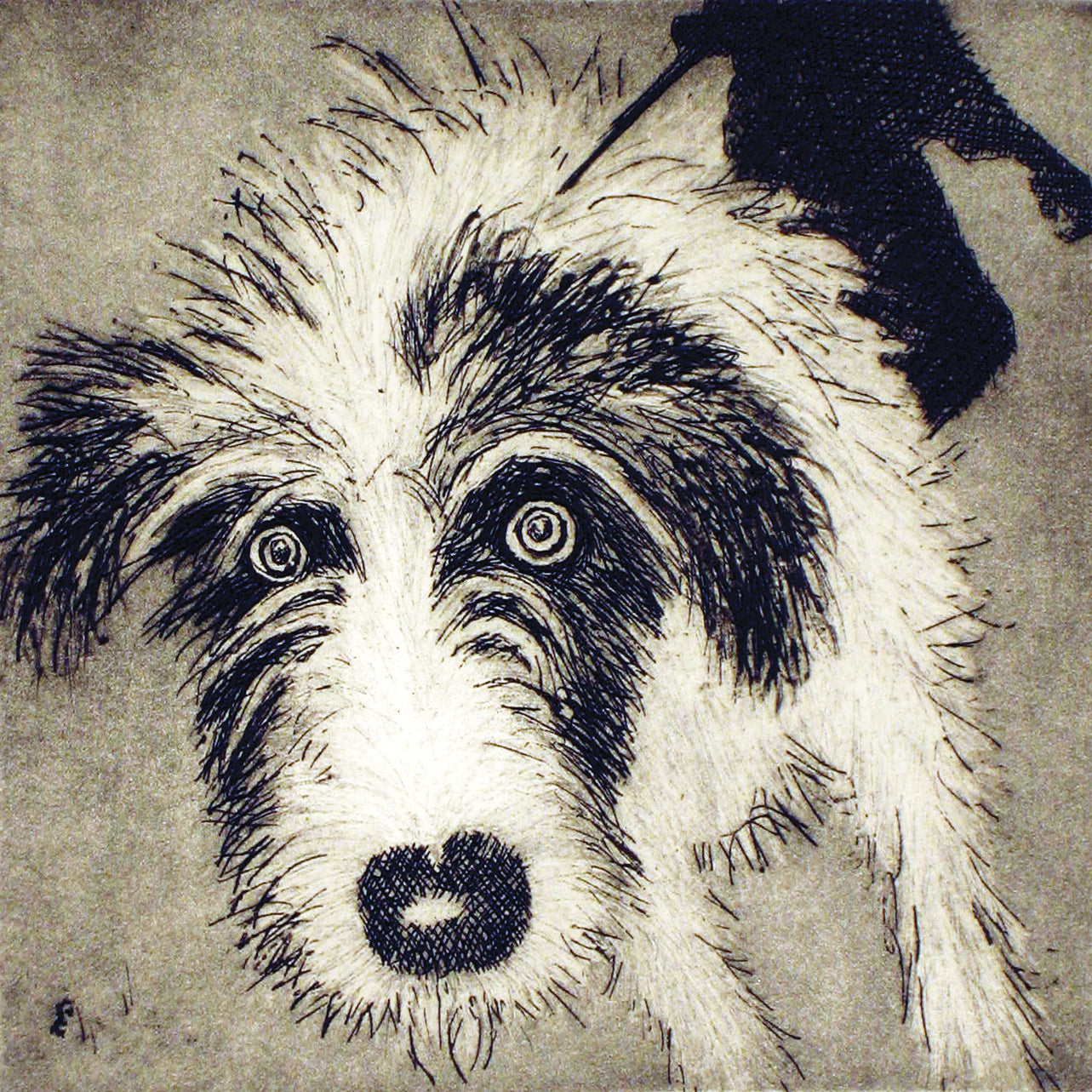 Walkies by Susie Perring, Art Greeting Card, Aquatint, Dog on lead with staring eyes