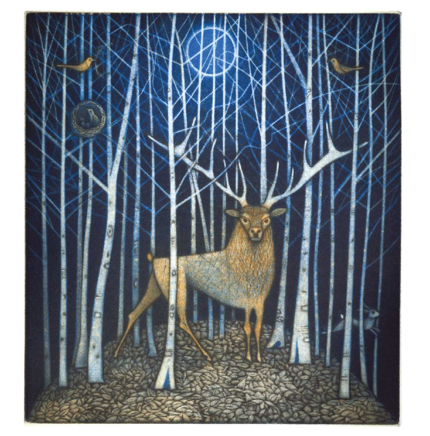 Art Greeting Card, Christmas Pack, Stag in woods by moonlight