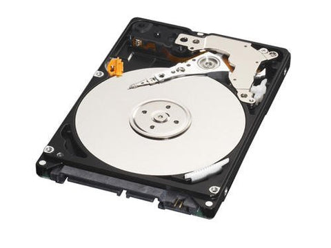 Western Digital 250GB Internal Hard Disk for Laptop
