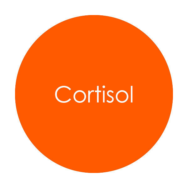 Cortisol Total