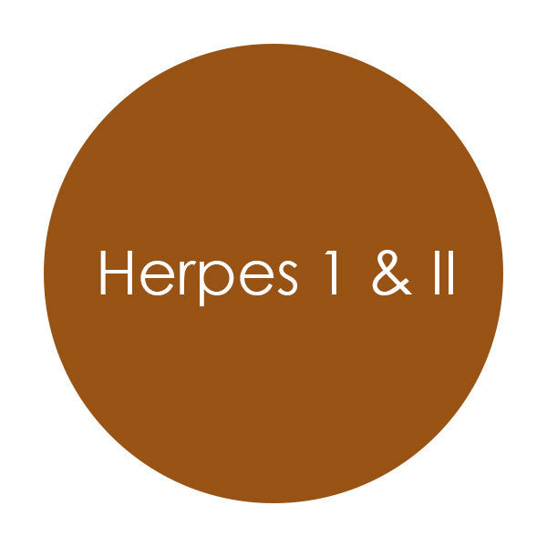 Oral & Genital Herpes (HSV-1 and 2)
