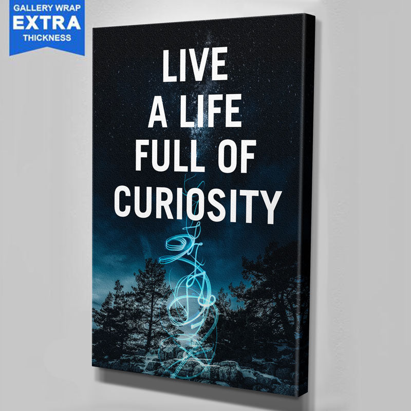 Curiosity Quote Canvas