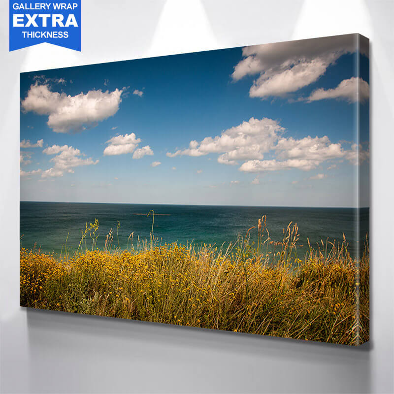 Grassy Ocean Beautiful Sky Wall Art Canvas Art