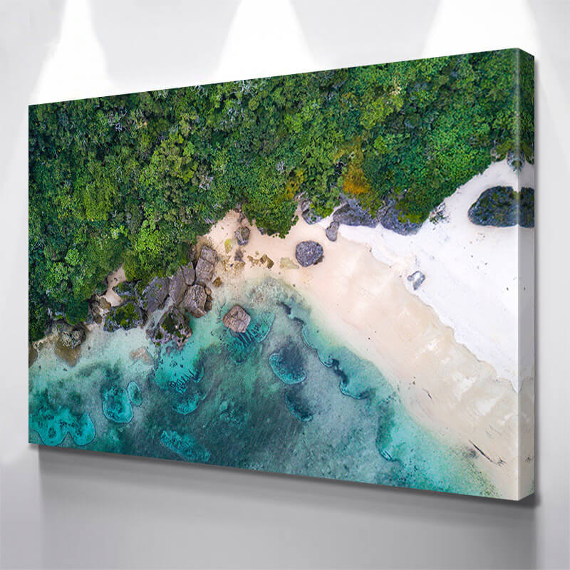 Aerial Jungle Beach  Wall Art Canvas Art